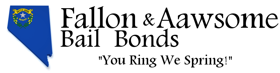 Fallon & Aawsome Bail Bonds